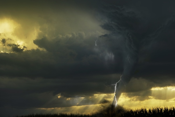 Tornado hitting a field.